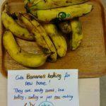 überreife Bananen mit Schild, sie mitzunehmen. Foto: © J. Mumme