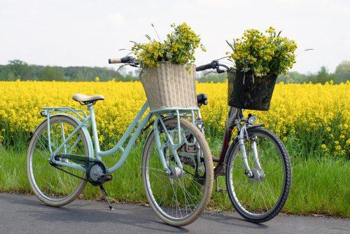 Bild zur Bewerbung der Radtour auf dem zwei Hollandfahrräder mit gelben Blumen in den Körben vor einem Rapsfeld zu sehen ist. Foto: © CC0