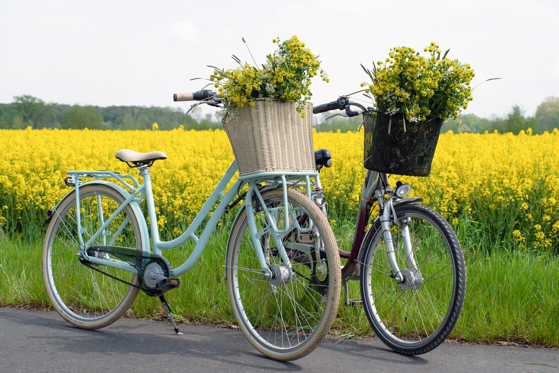Bild zur Bewerbung der Radtour auf dem zwei Hollandfahrräder mit gelben Blumen in den Körben vor einem Rapsfeld zu sehen ist. © CC0
